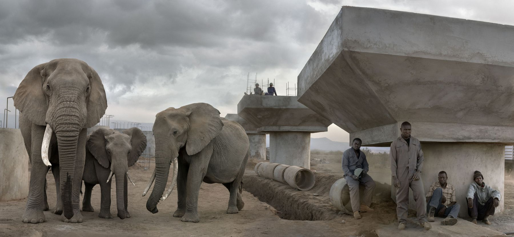 BRIDGE CONSTRUCTION WITH ELEPHANTS & WORKERS IN DAY, 2018,