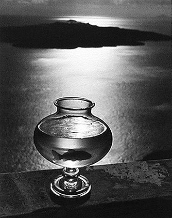 Goldfish in Glass, Santorini, Greece, 1937, 11 x 14 Silver Gelatin Photograph