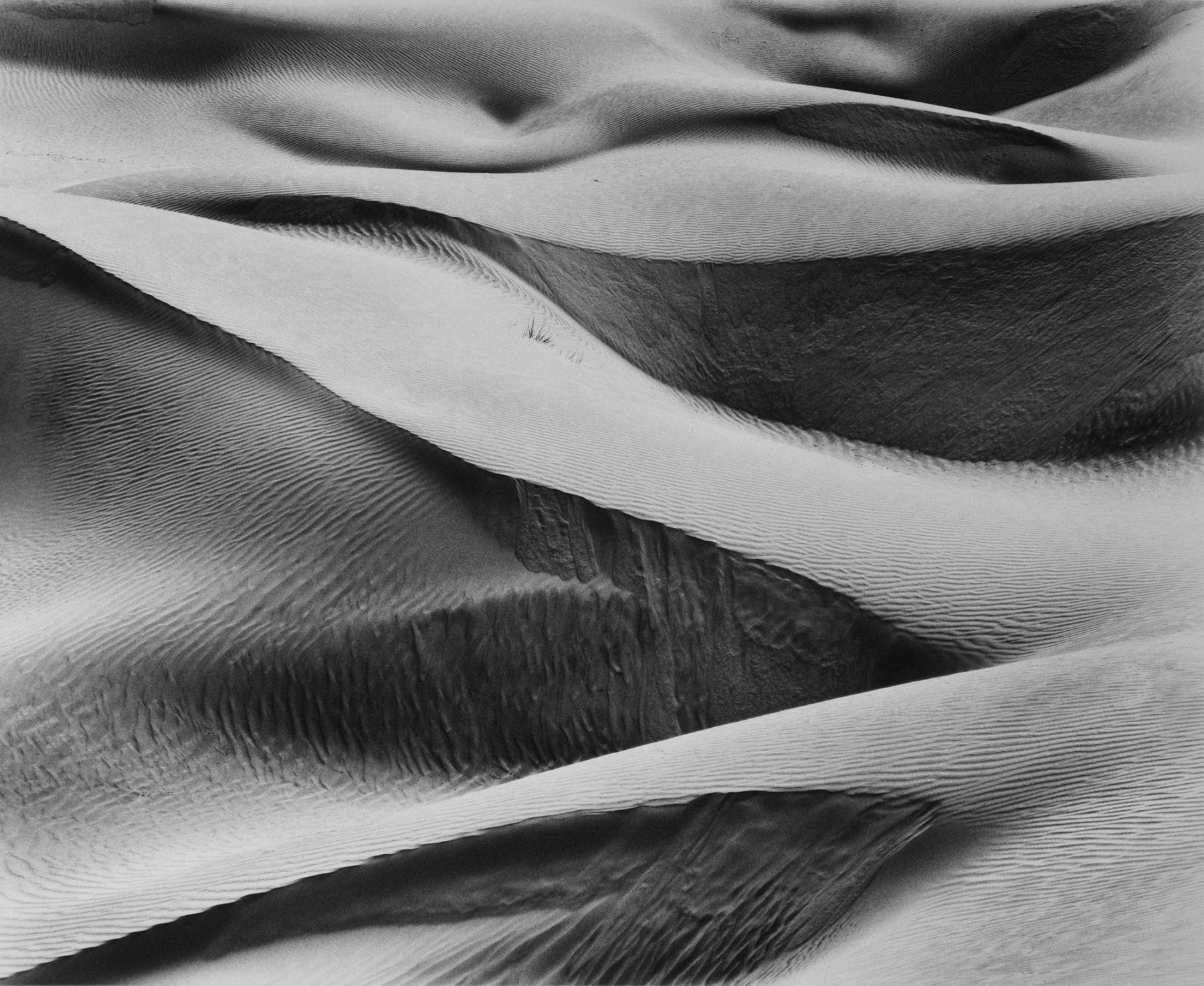 Rollicking Dunes, 2010, Silver Gelatin Photograph