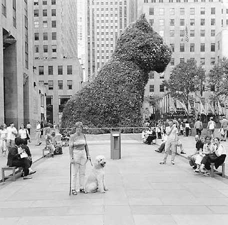 Rockefeller Center, New York City, 2000
