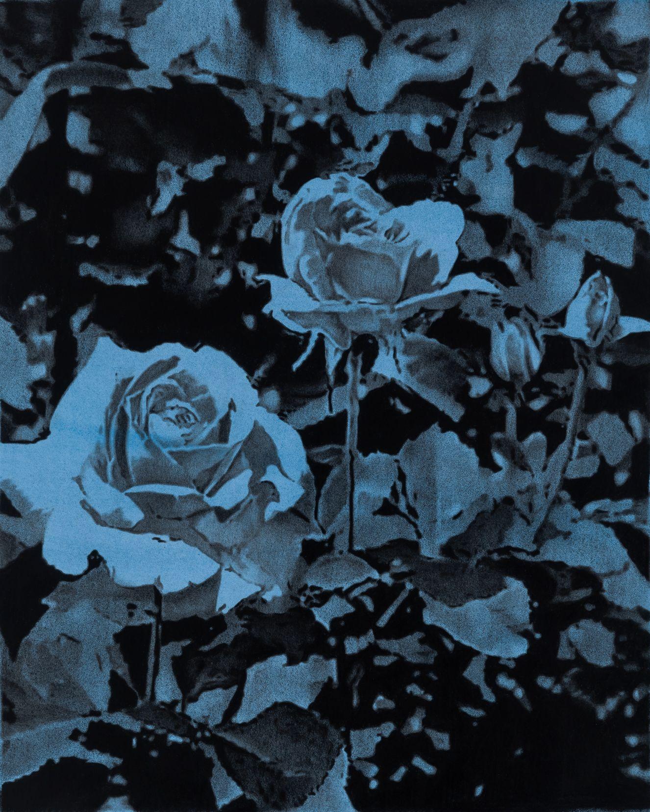 Rose Garden No. 2, 2017