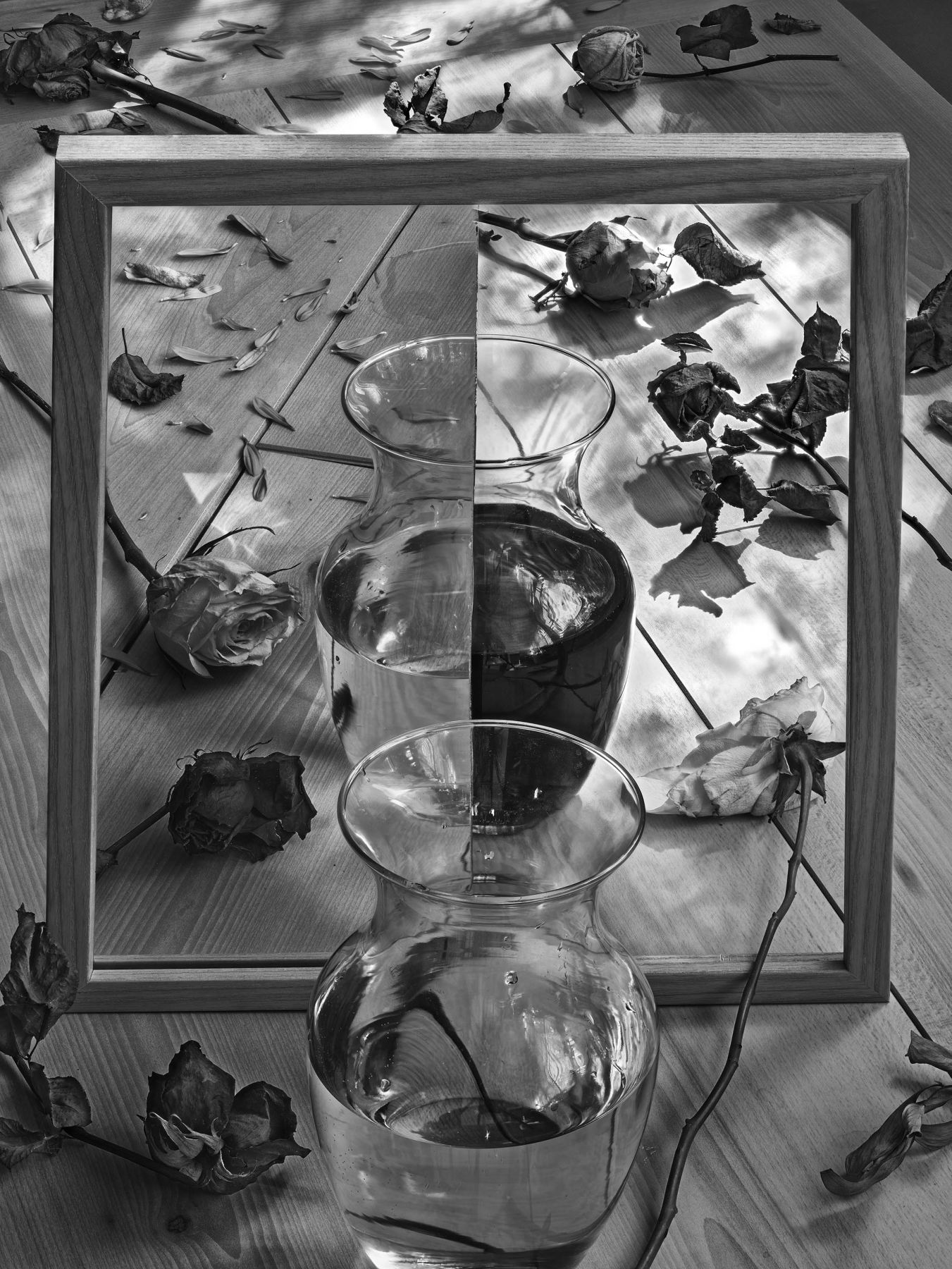 abelado morell, flowers for lisa #66 - after lewis carroll