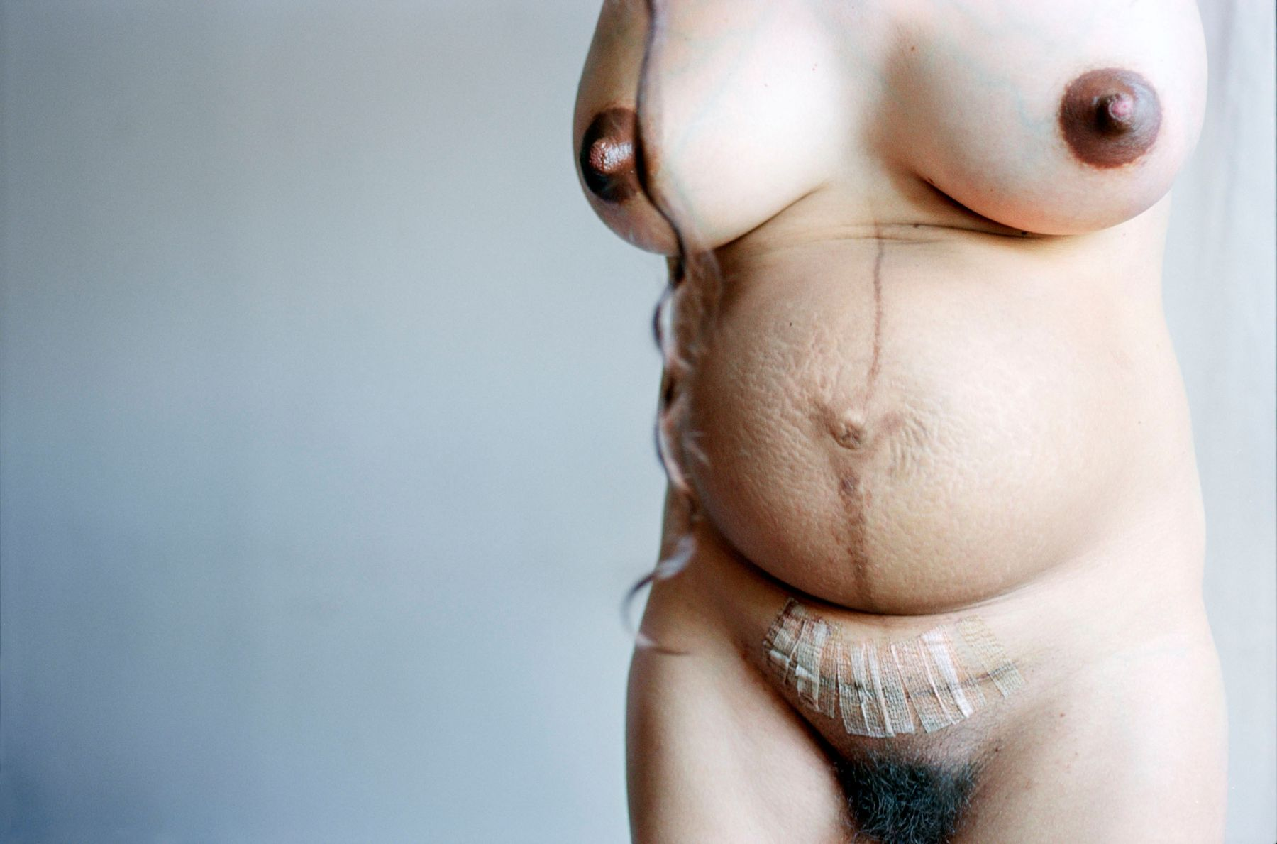 elinor carucci my belly after pregnancy and c-section
