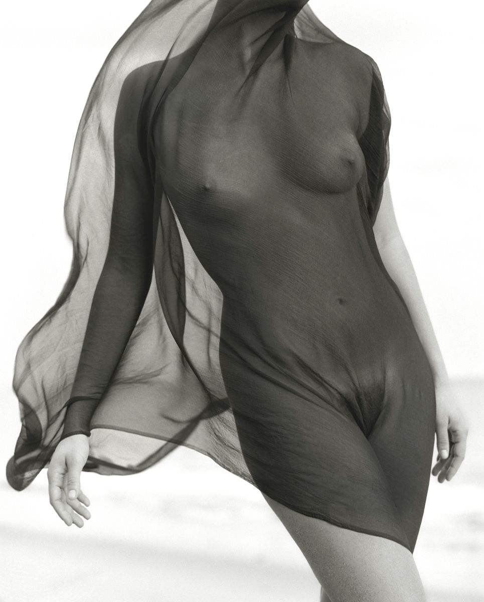 herb ritts female torso with veil, paradise cove