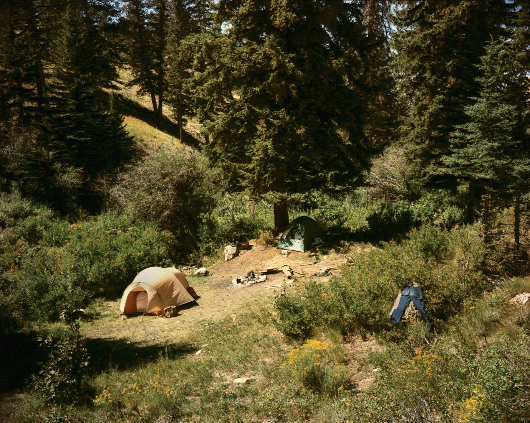 stephen shore Jackson, Wyoming, September 2, 1979