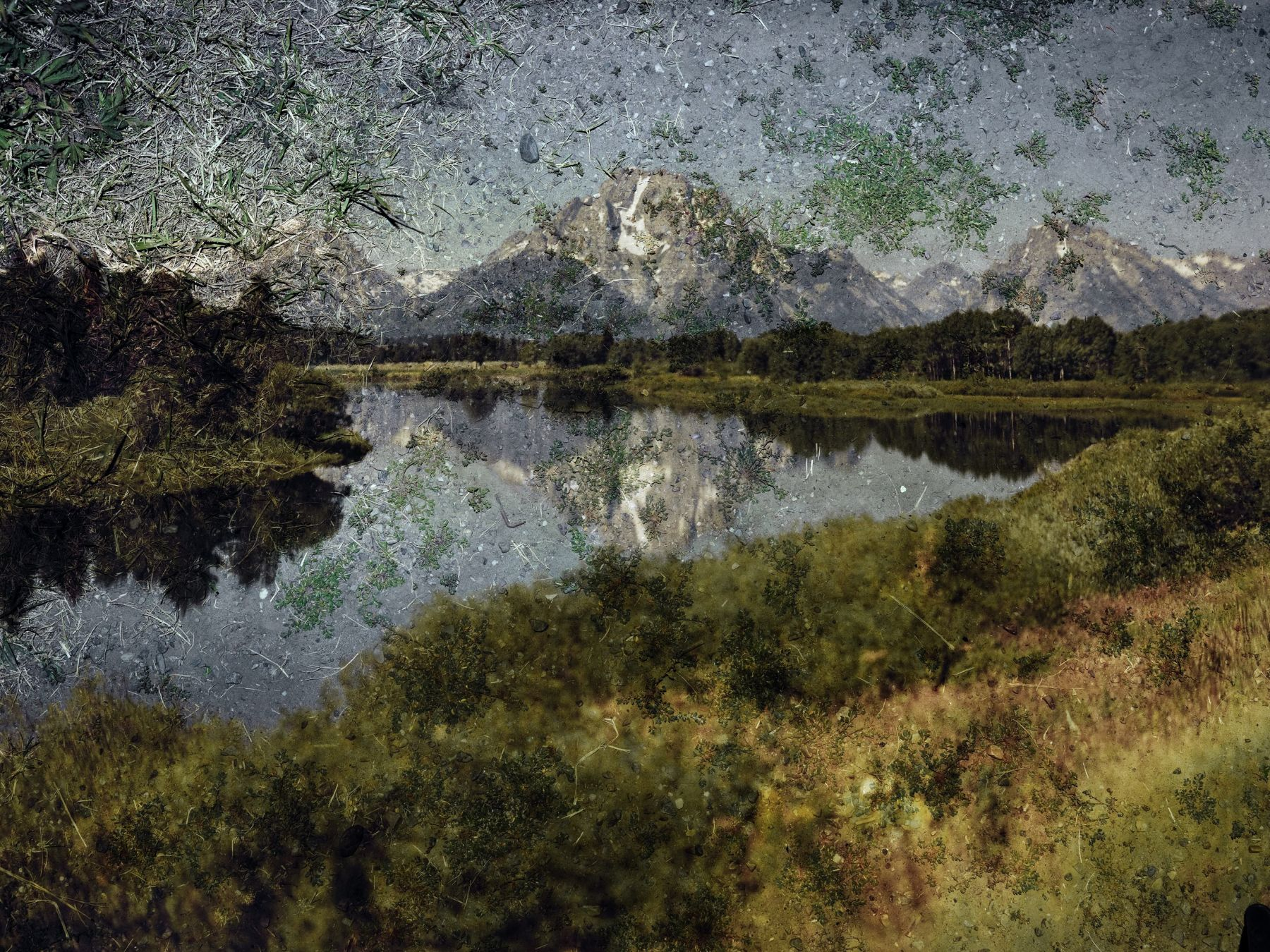 Abelardo Morell Tent-Camera Image On Ground: View of Mount Moran and the Snake River From Oxbow Bend, Grand Teton National Park, Wyoming
