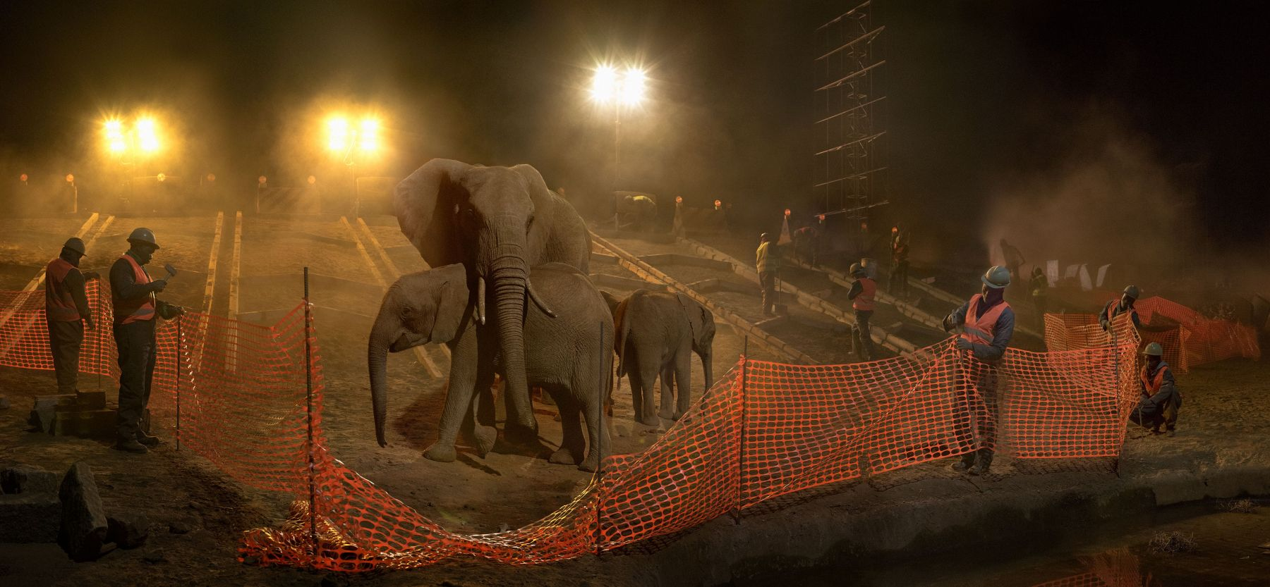nick brandt, highway construction with elephants, workers & fence