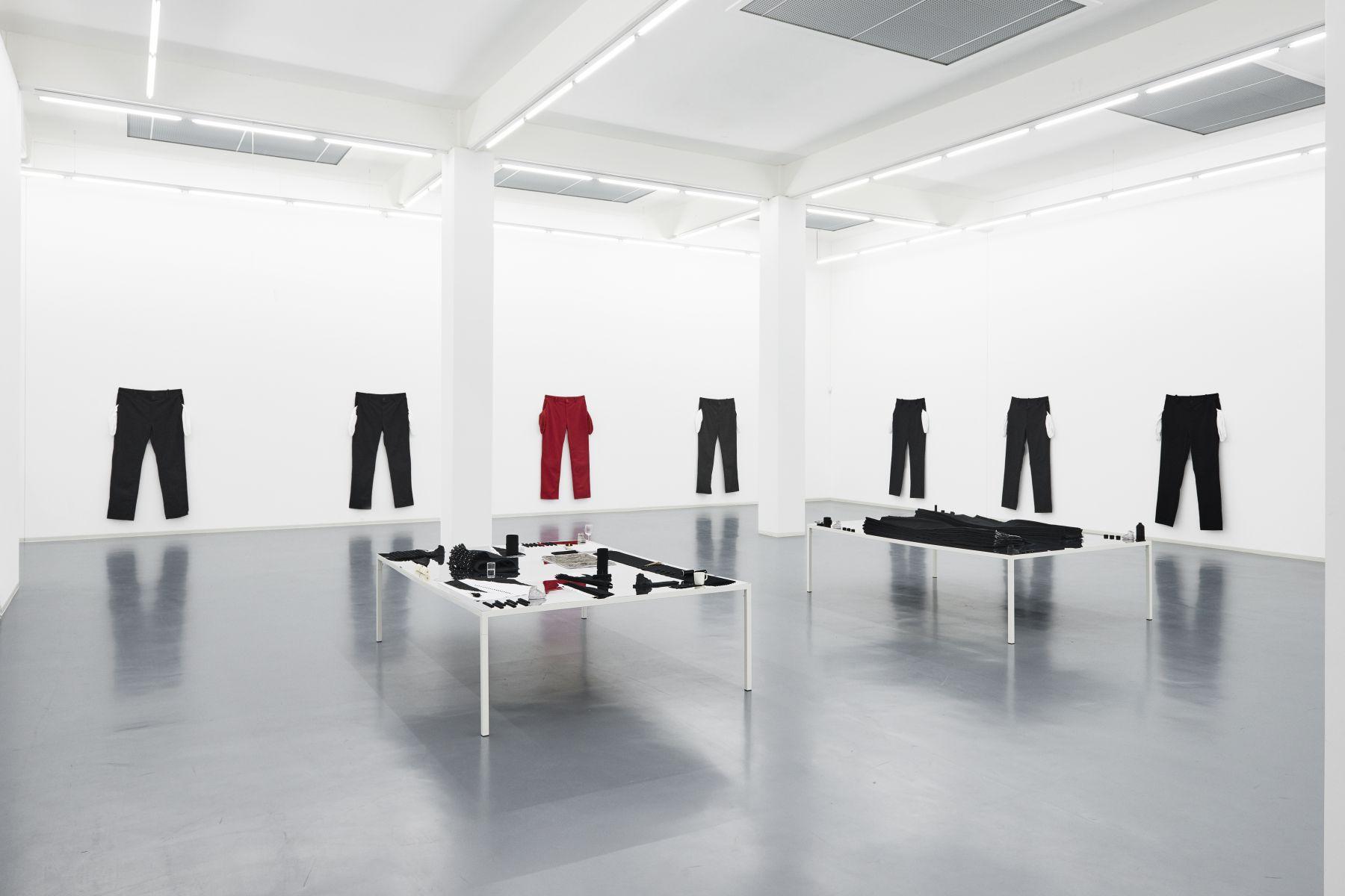 AMANDA ROSS-HO Installation view at Bonner Kunstverein, Bonn, Germany, 2017