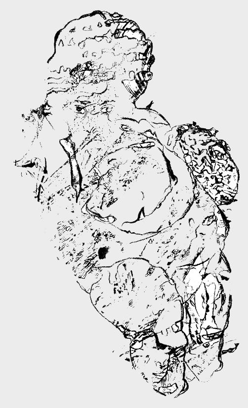 text 5 (Venus of Willendorf)