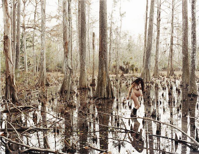 JUSTINE KURLAND Wild Palms