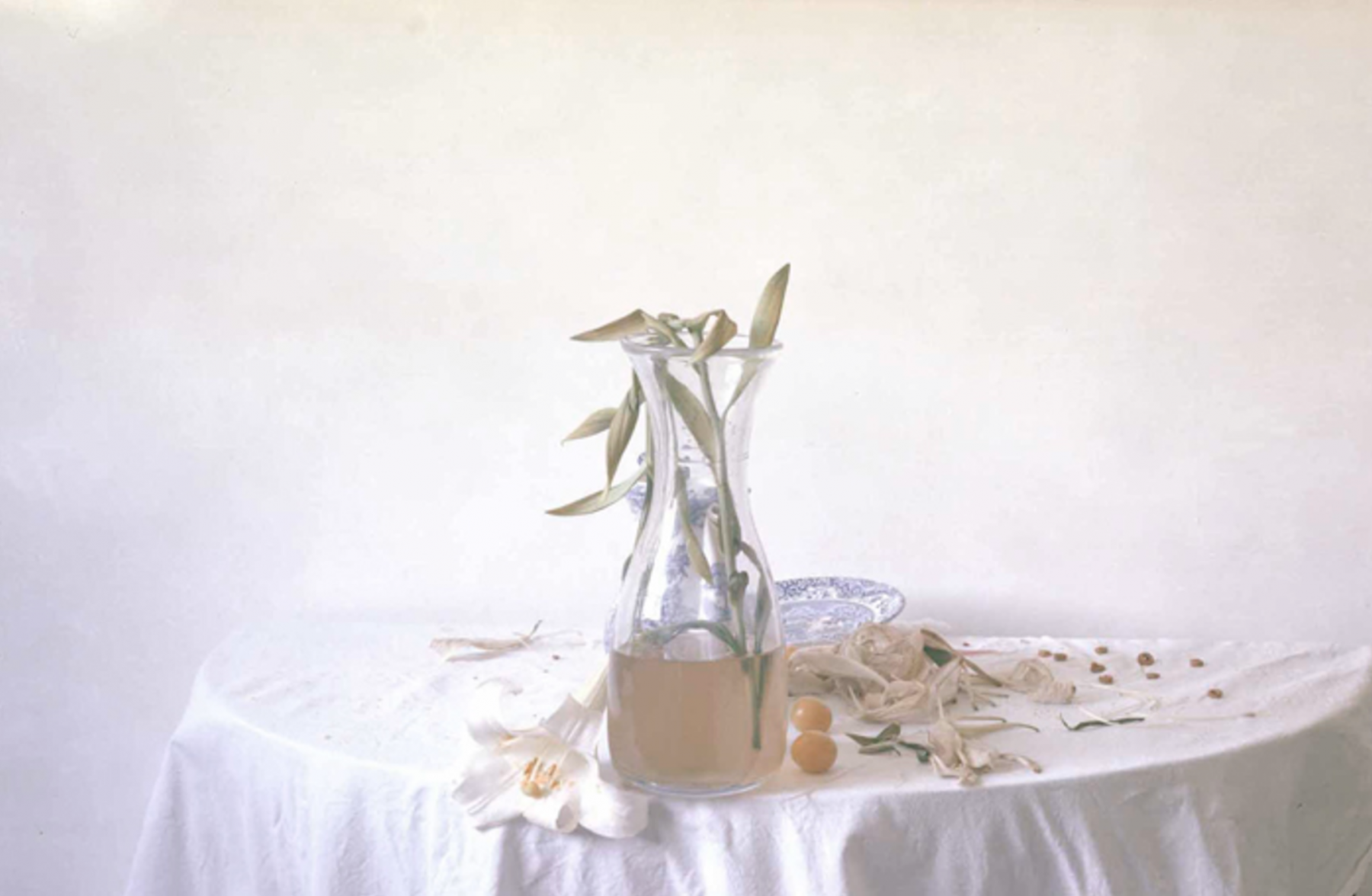 Laura Letinsky,  Untitled #32, from the series Hardly More Than Ever, 2001,  Archival Pigment Print,  15.25h x 23w in, Edition of 15, Photography