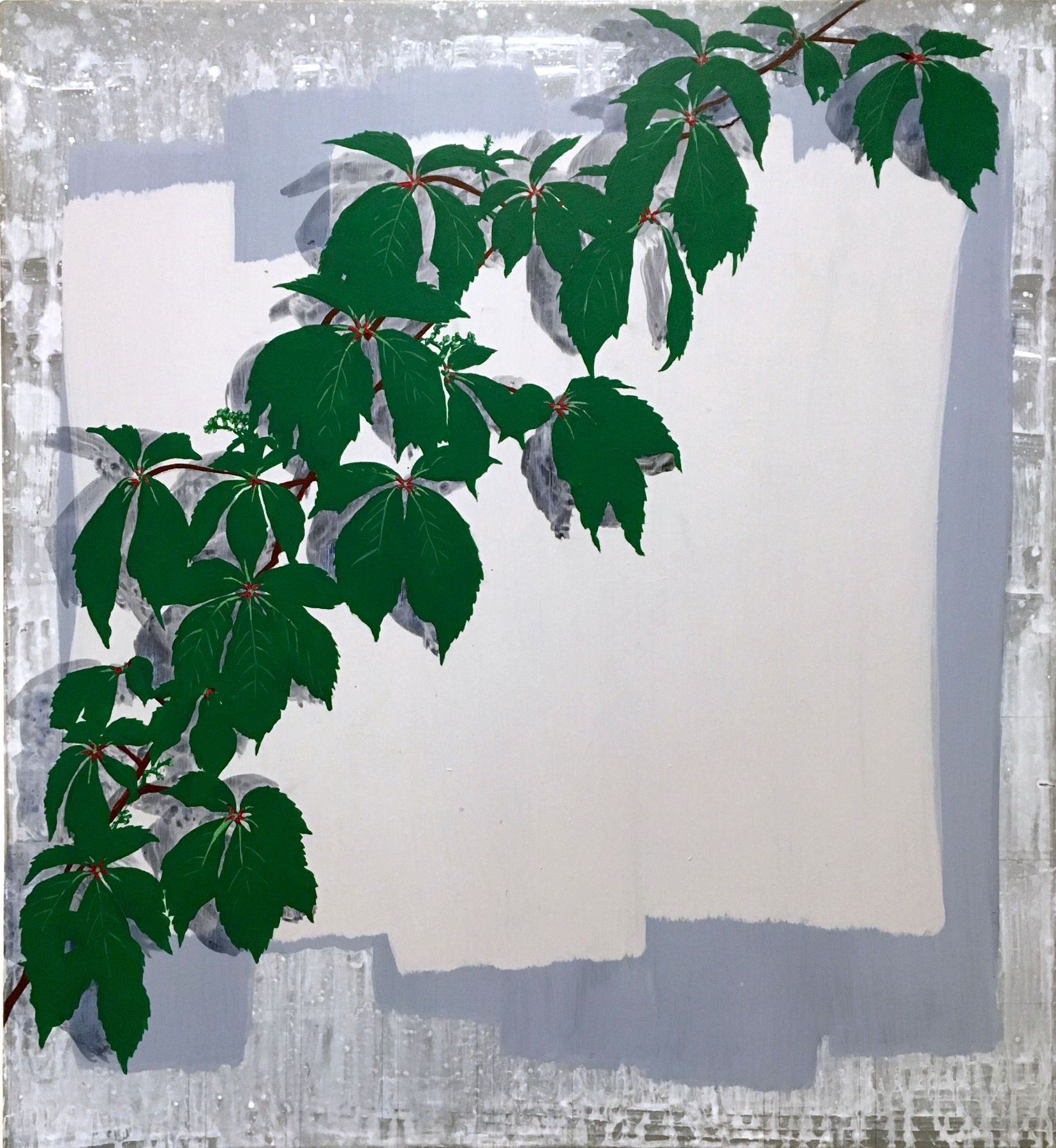 Hannah Cole  Virginia Creeper, 2016  Acrylic on canvas  24h x 22w in 60.96h x 55.88w cm  HC_032 Photorealistic painting
