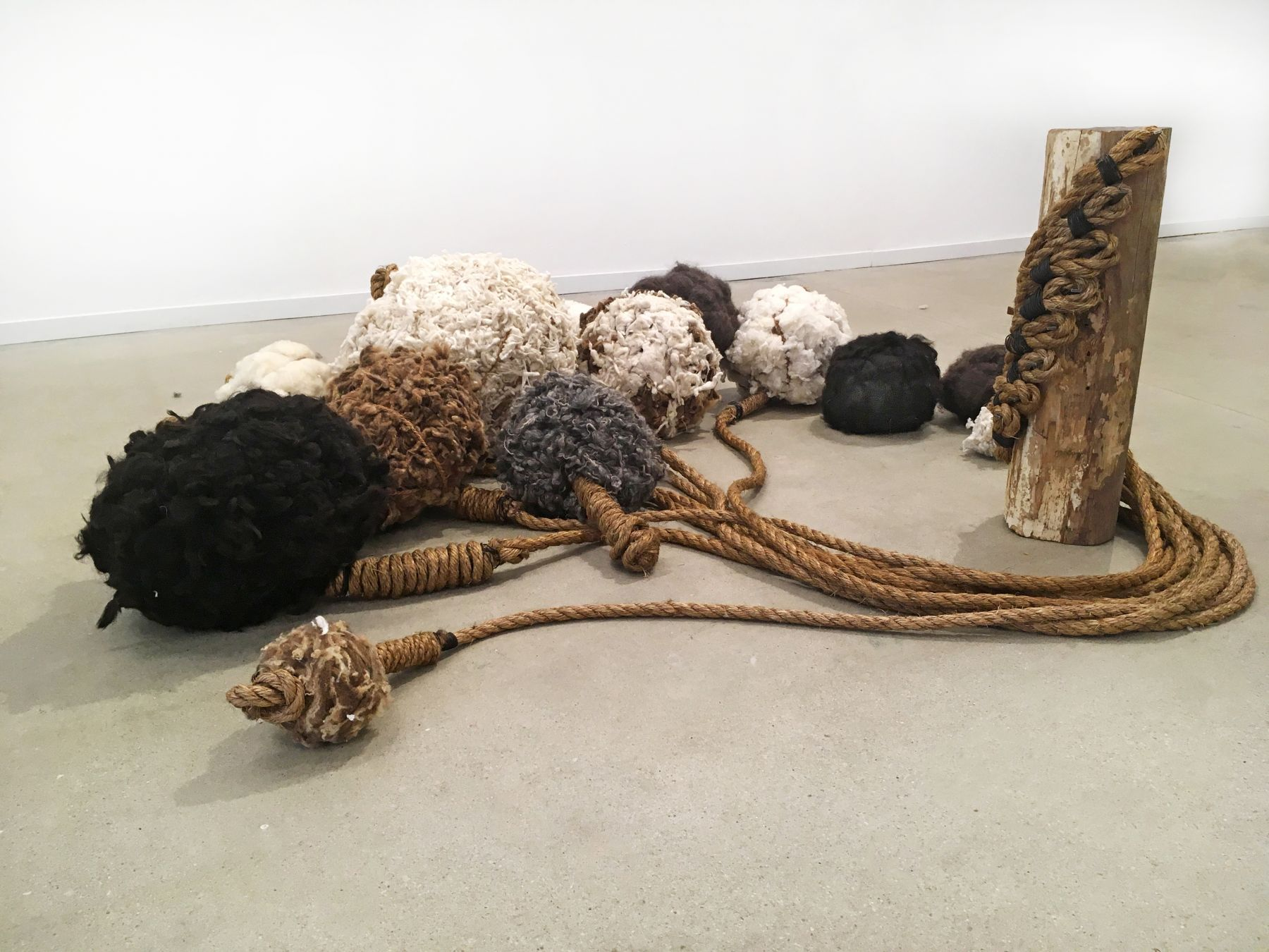 Molly Sawyer Held Adrift Animal fleece, rope, wood, steel pegs Dimensions variable, sculpture