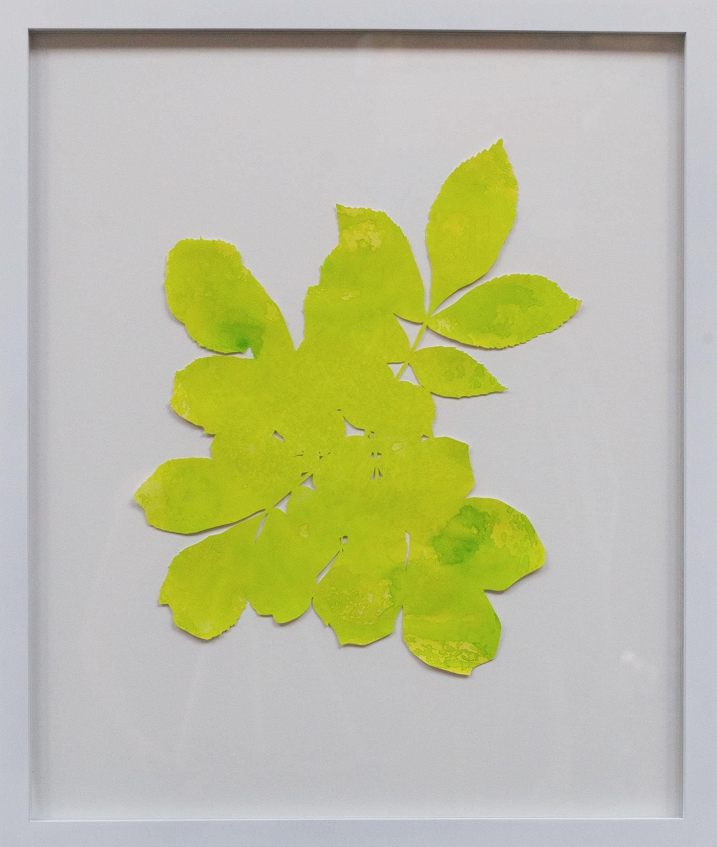 Hannah Cole  Untitled Yellow Weed, 2018  watercolor on cut paper  Framed: 24h x 20w in 60.96h x 50.80w cm  HC_046