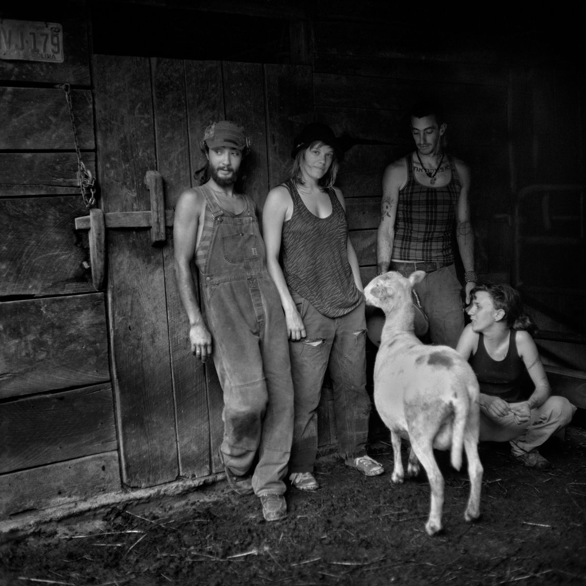 Rob Amberg, Gibberish, Ekho, Shu and Kate, Paw Paw, Madison County, NC, 2014, Archival Pigment Print, 5 x 5 inches (image size), Edition of 10, Photography