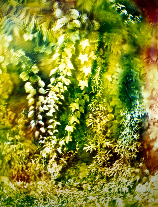 Bryan Graf  Romasco Ridge 1, 2019  Chromogenic Print  30h x 45w in
