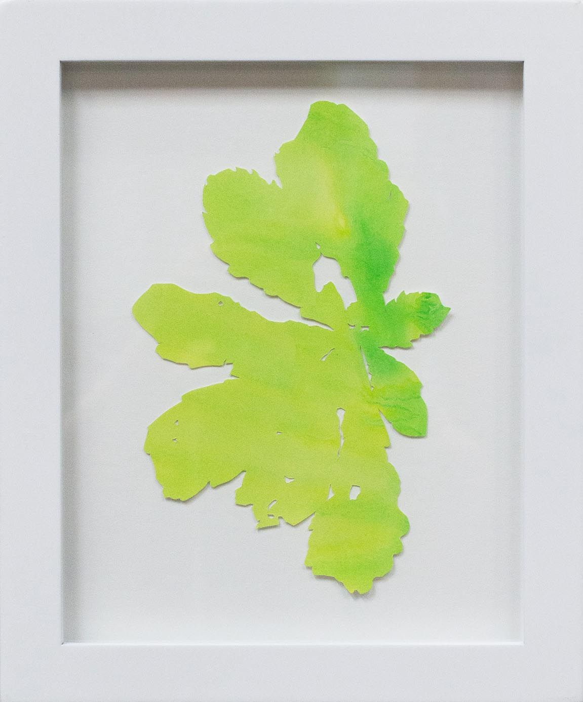 Hannah Cole  Fan-Shaped Weed, 2018  watercolor on cut paper  Framed: 10h x 8w in 25.40h x 20.32w cm  HC_063