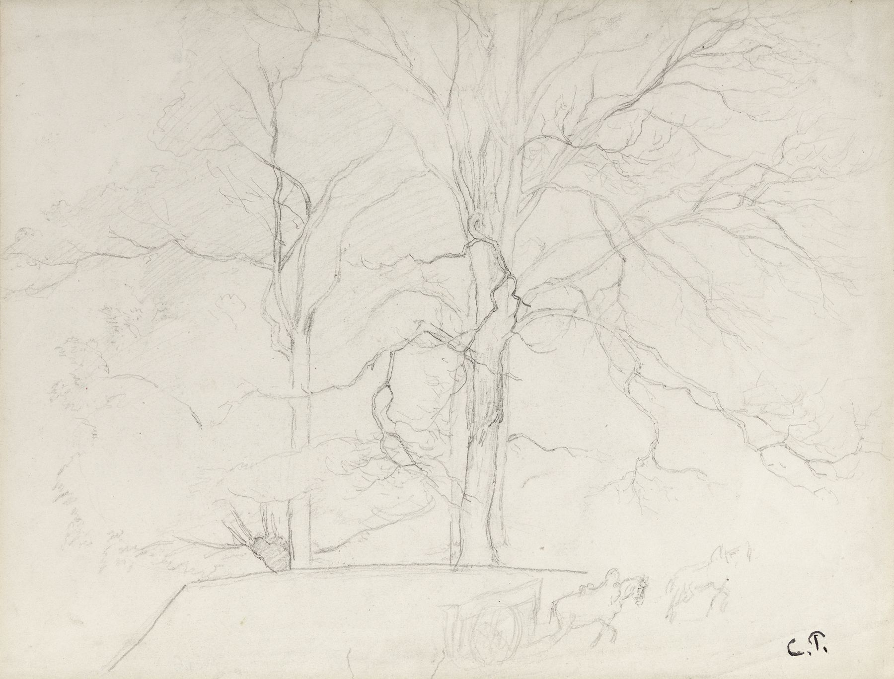 Camille Pissarro, Trees, Montmorency, c. 1855-60, Pencil on paper 12 1/2 x 16 1/2 inches
