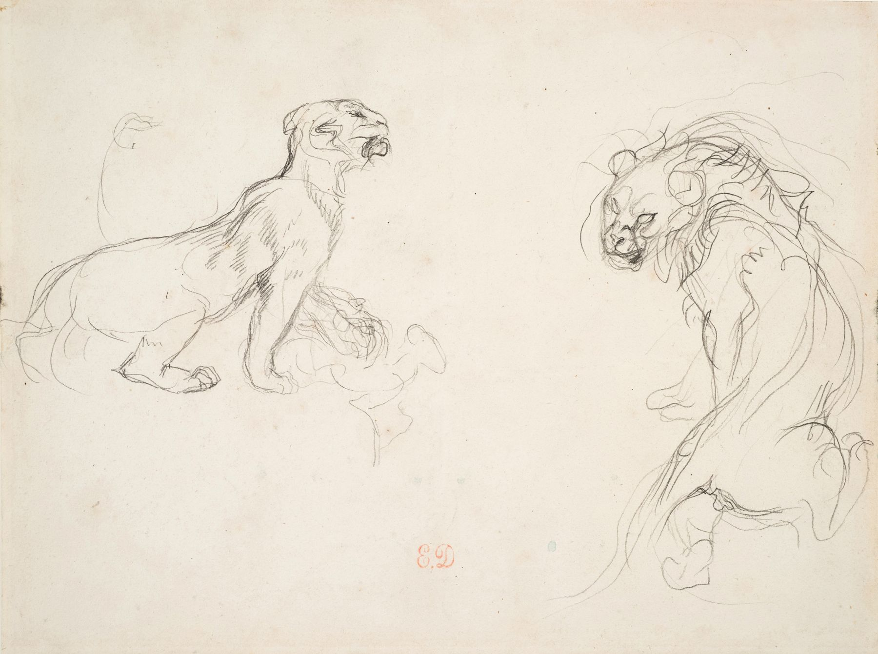 Eugène Delacroix, A Lion and a Lioness Pencil on paper 6 7/8 x 9 inches