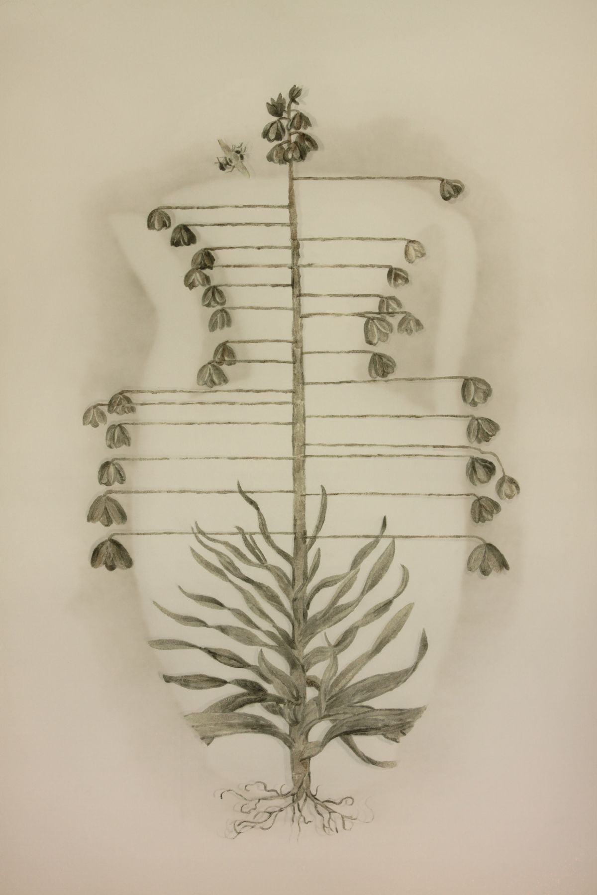"Vase of Flowersç""¶èŠ±, 2011"