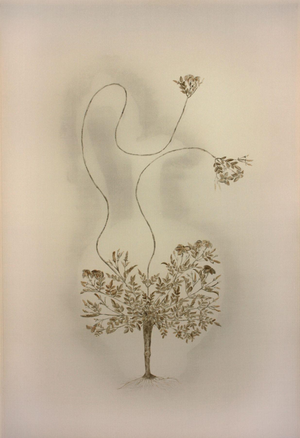 Vase of Flowers 瓶花, 2011