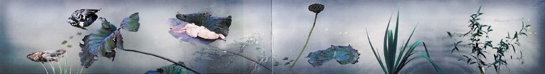 Dreaming of Song Emperor's Garden on an Early Autumn Morningæˆ'梦见了徽宗时代的池塘晚秋, 2000
