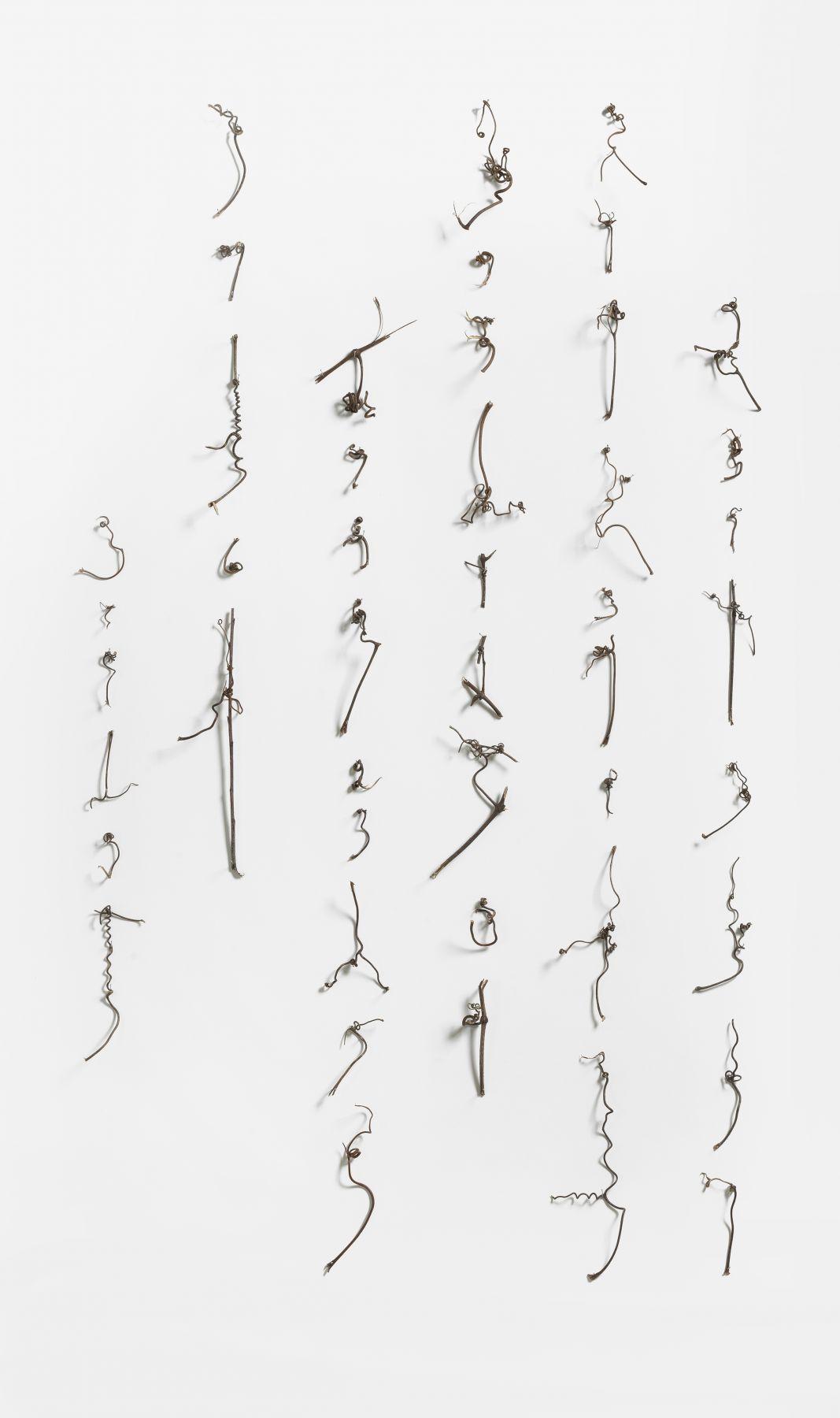 Cui Fei 崔斐 (b. 1970), Manuscript of Nature V_006 5 自然的手稿之五(006) 5