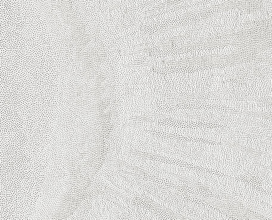 Detail, Pupil – 380,000 Pinpricks
