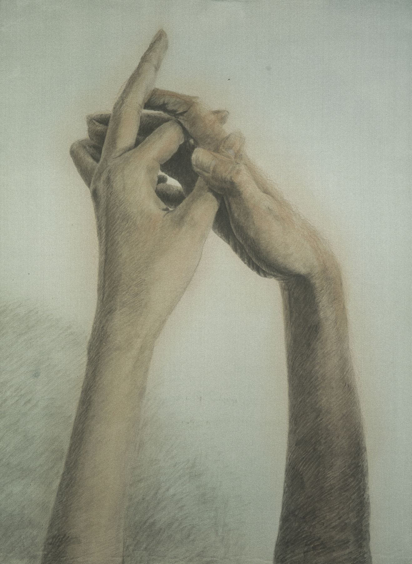 Botticelli- Hands 波提切利的手, 2012