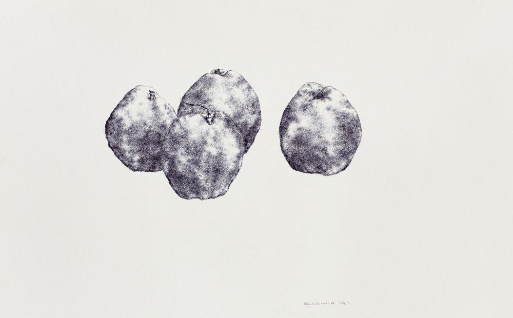 Pear No. 4 梨子 4, 2012
