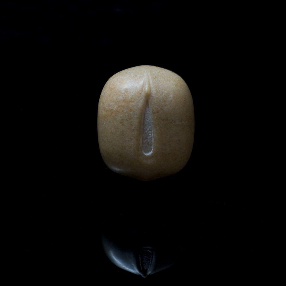 Mung Beanç»¿è±† 2009
