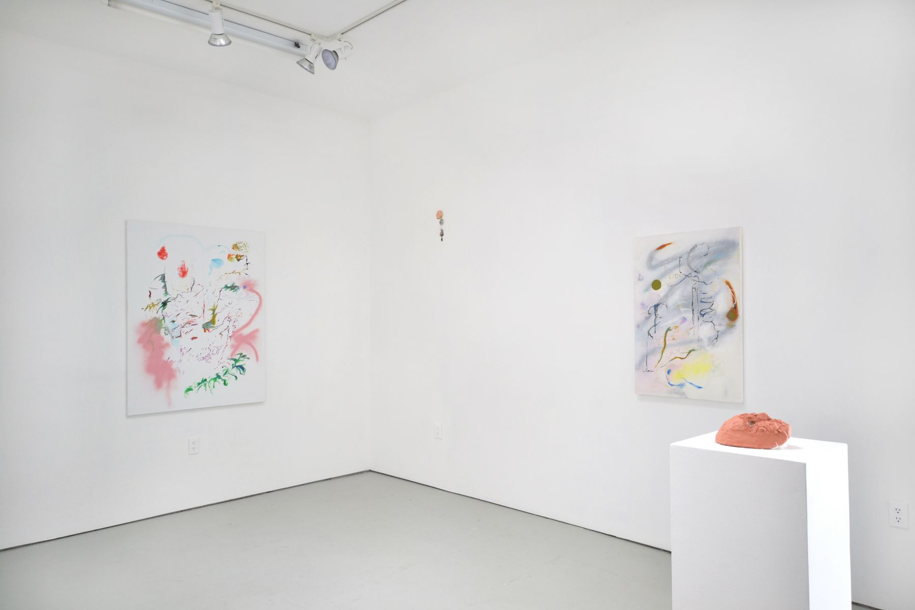 Installation view Super Killer Instinct