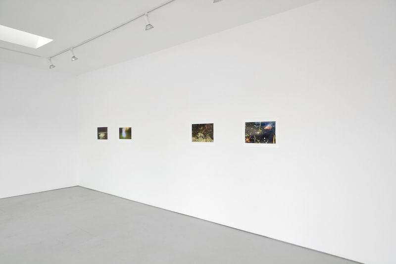 Installation View Sublunary World