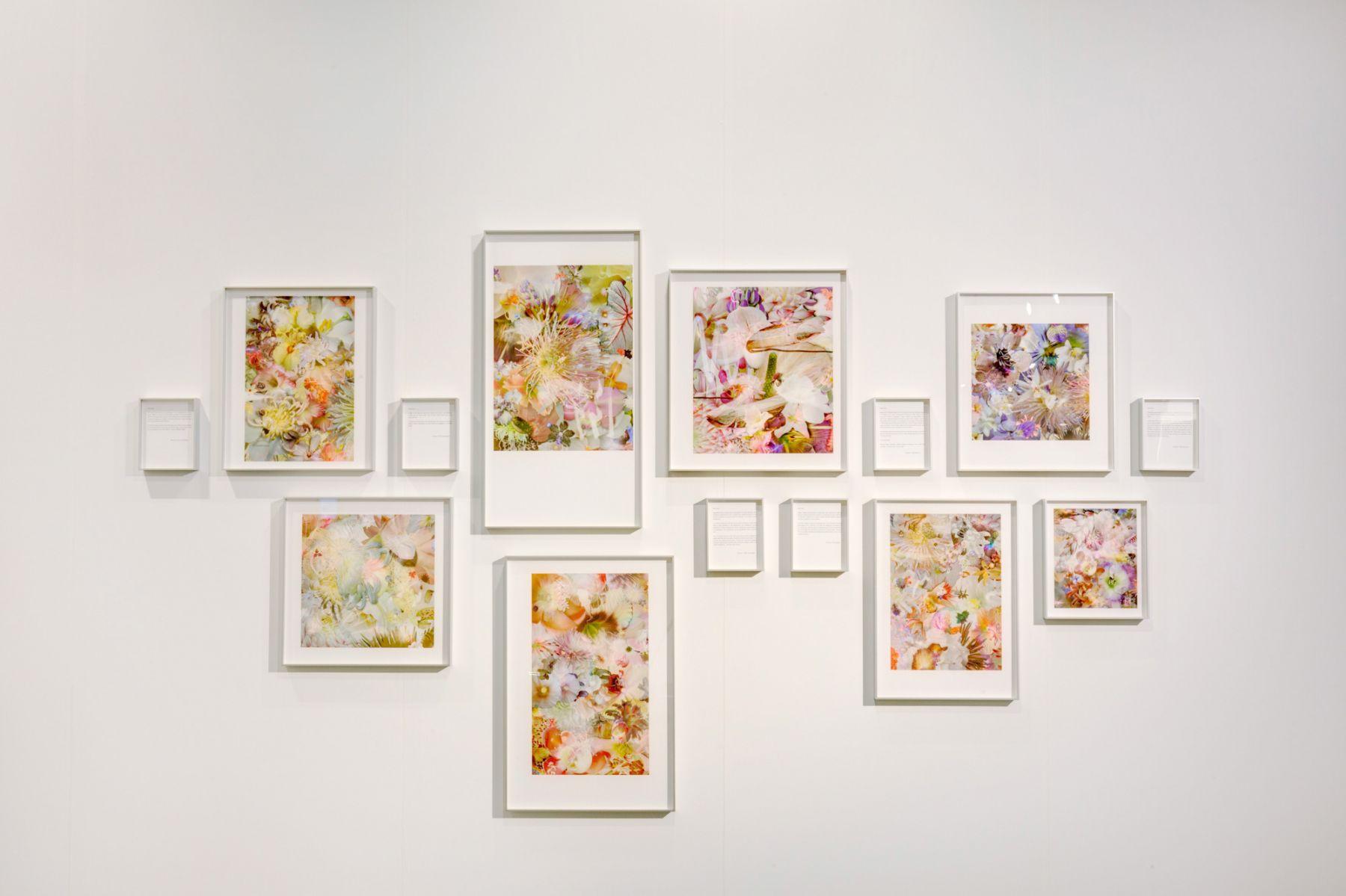 Liu Shiyuan Untitled, 2014