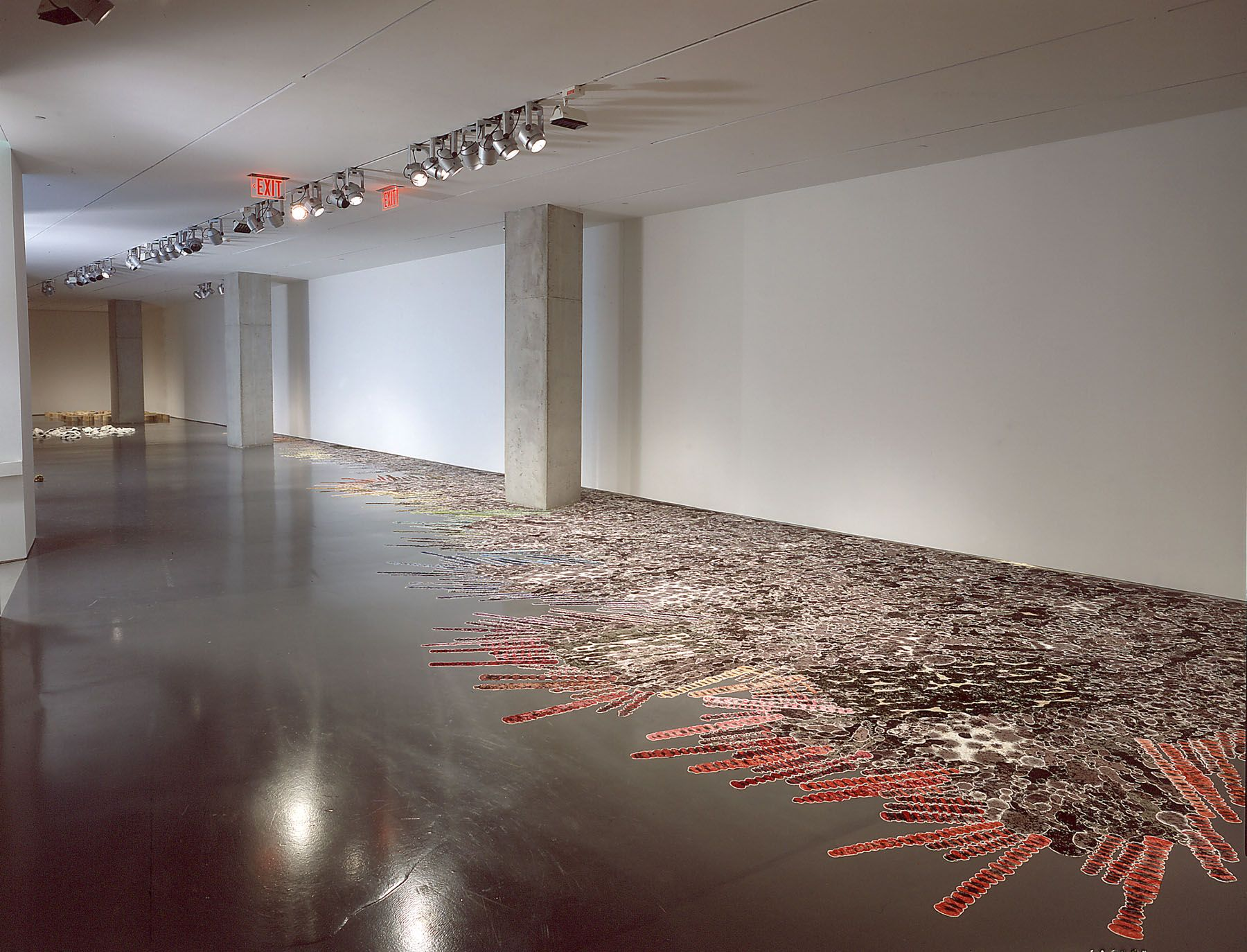 Polly Apfelbaum, installation view, Contemporary Arts Center (2004)