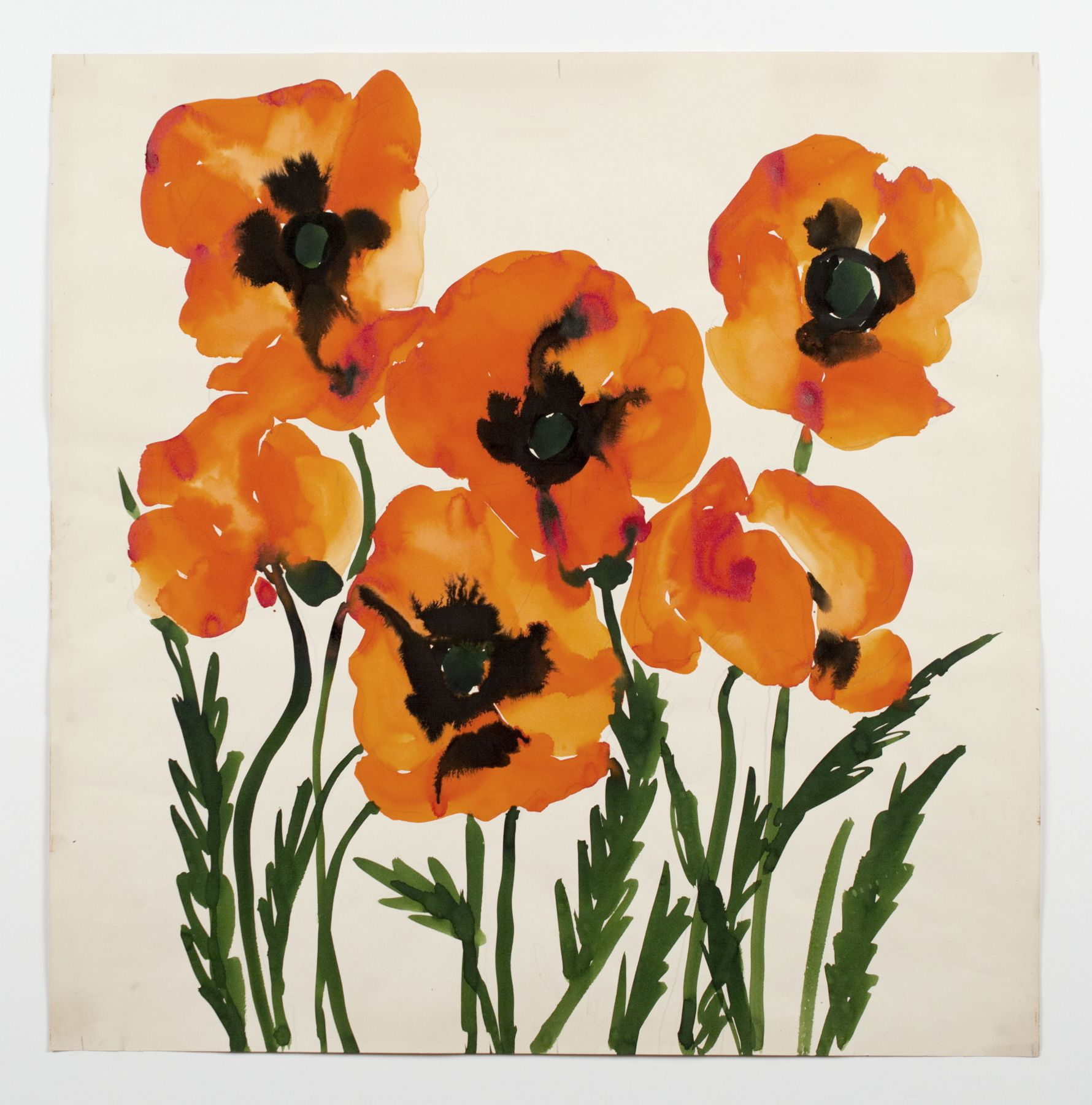 "Oriental Poppies, from the ""Florals"" series [029], c. 1973, Watercolor On Paper"