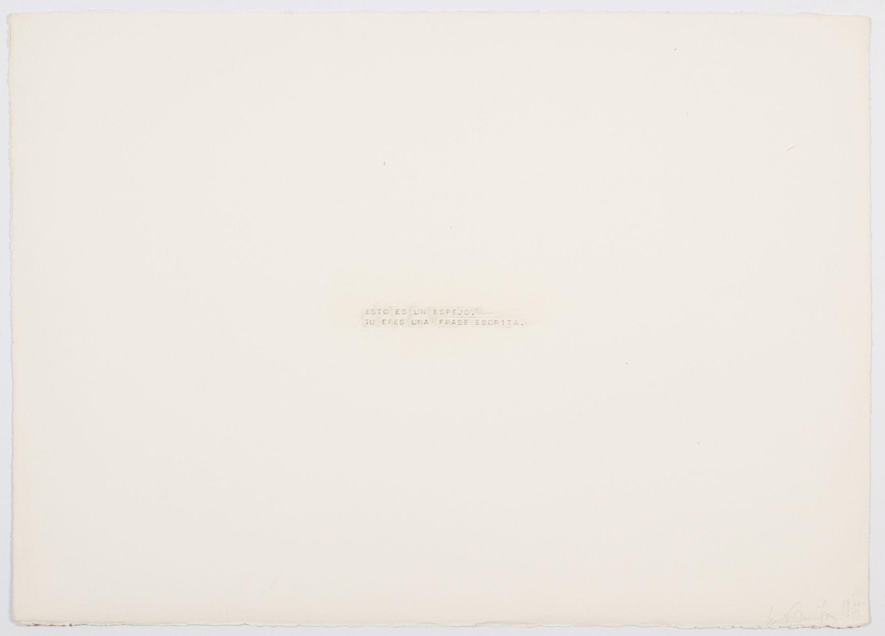 Luis Camnitzer, Esto es un espejo. Tu eres una frase escrita., 1966-73
