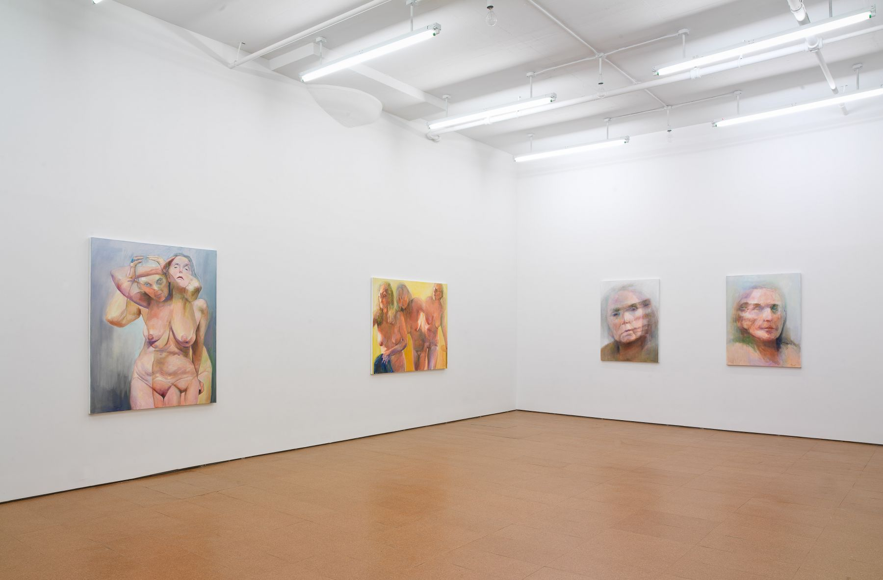 Joan Semmel, Installation view, Alexander Gray Associates, 2011