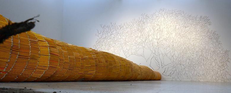 Luis Camnitzer Installation view; Museo de Arte de la Universidad Nacional (2012)