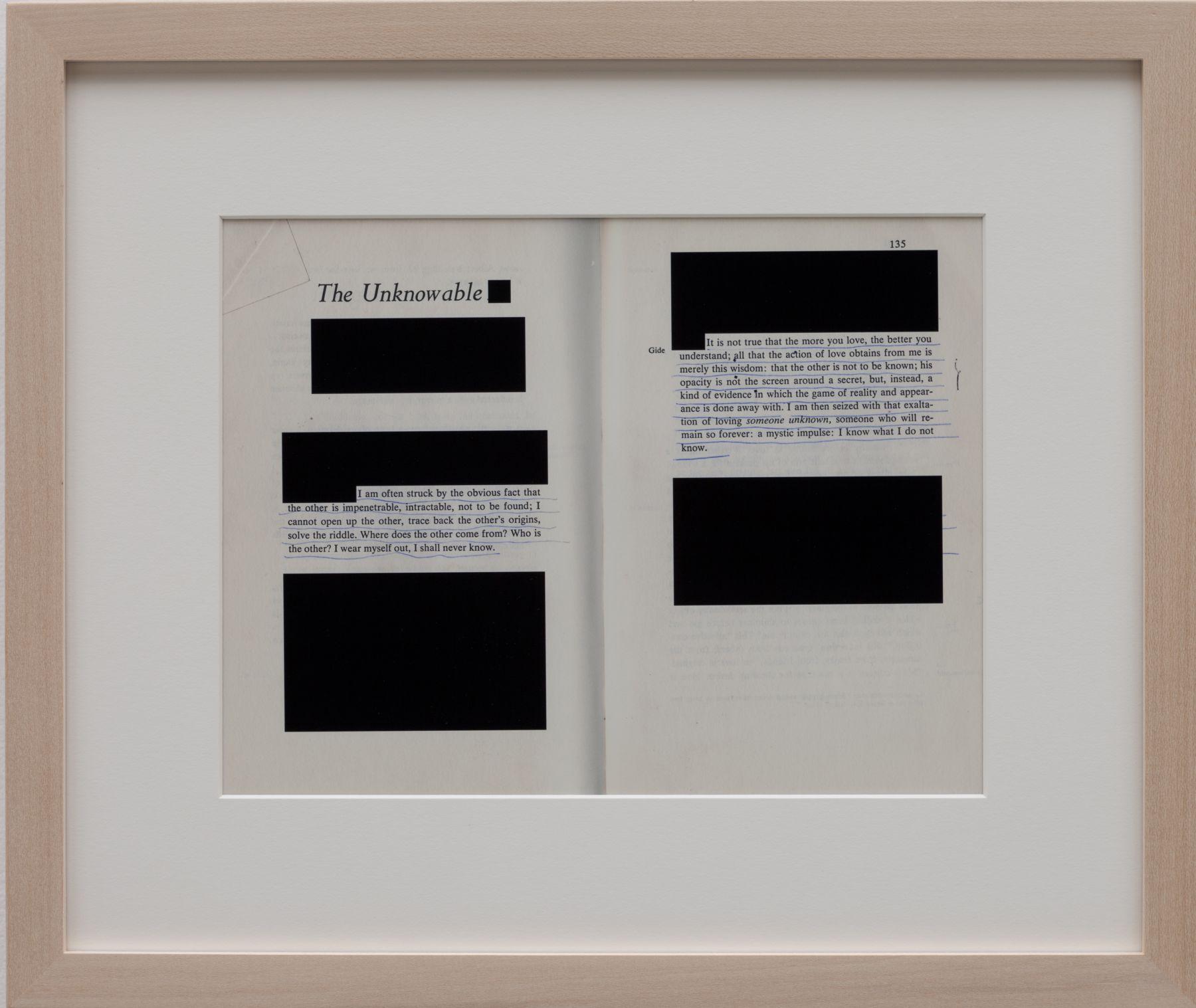 Valeska Soares, Edit (The Unknowable), 2012
