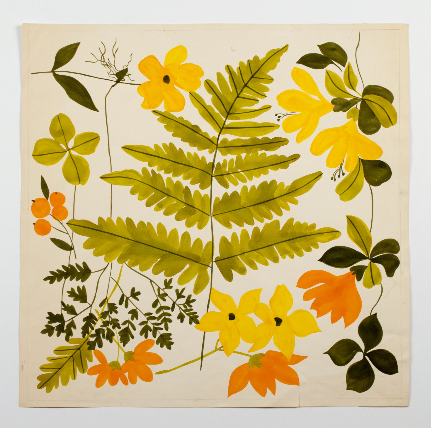 "Fern and Flowers, from the ""Florals"" series [044], c. 1973, Watercolor On Paper"