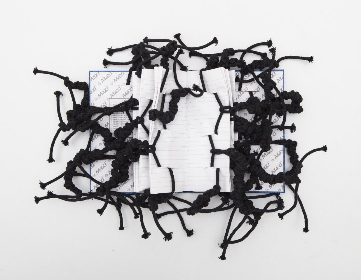 Cotton Rope No 2, 2012, Mixed Media