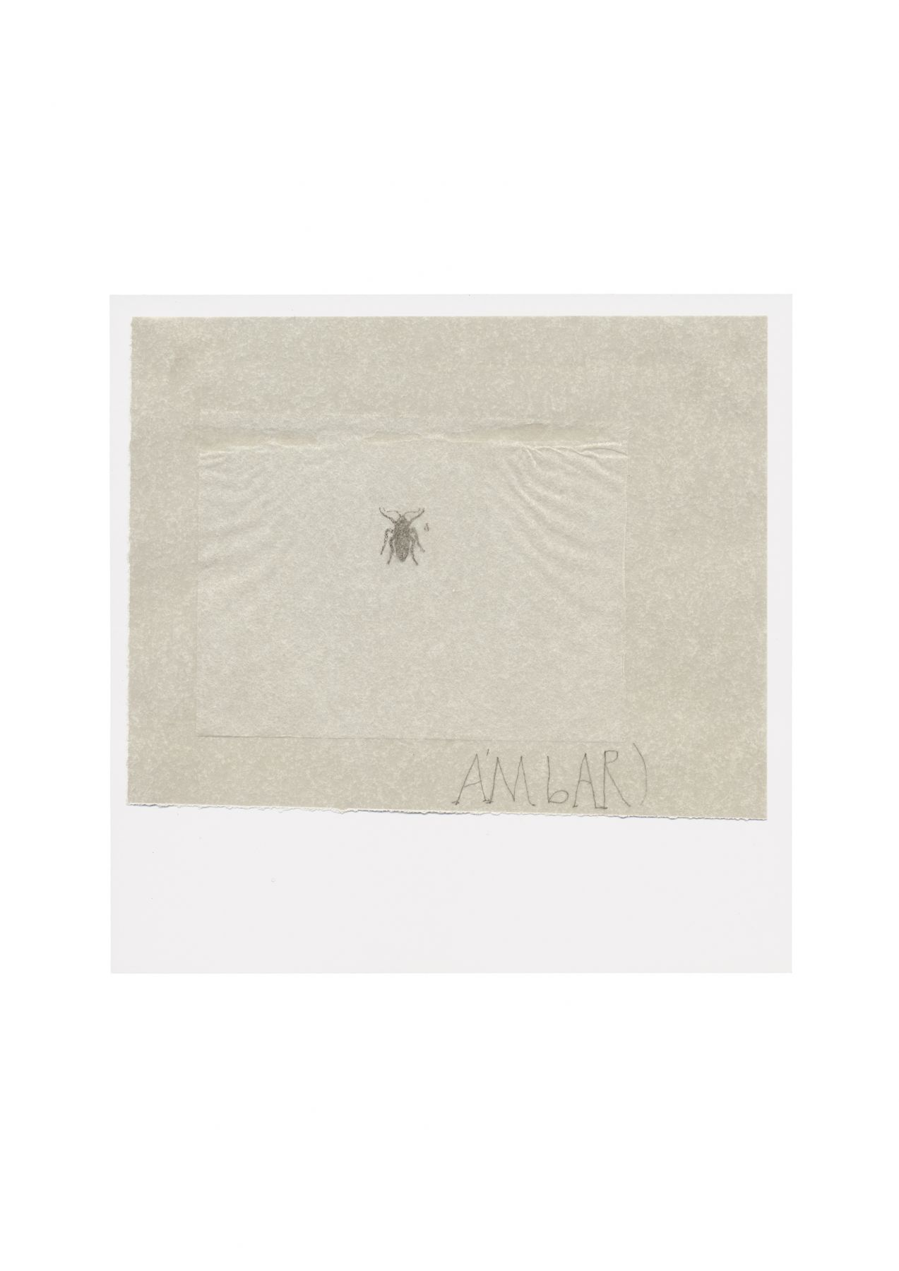 Ambar, 2002–03 Transparent paper, transfer on rice  paper and pencil on cardboard