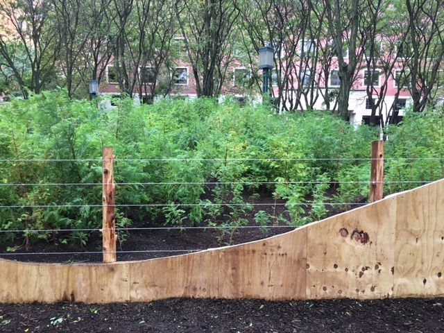 SPENCER FINCHLost ManCreekInstalled at MetroTech Commons, Brooklyn, New YorkOn view: October 2016 - March 2018
