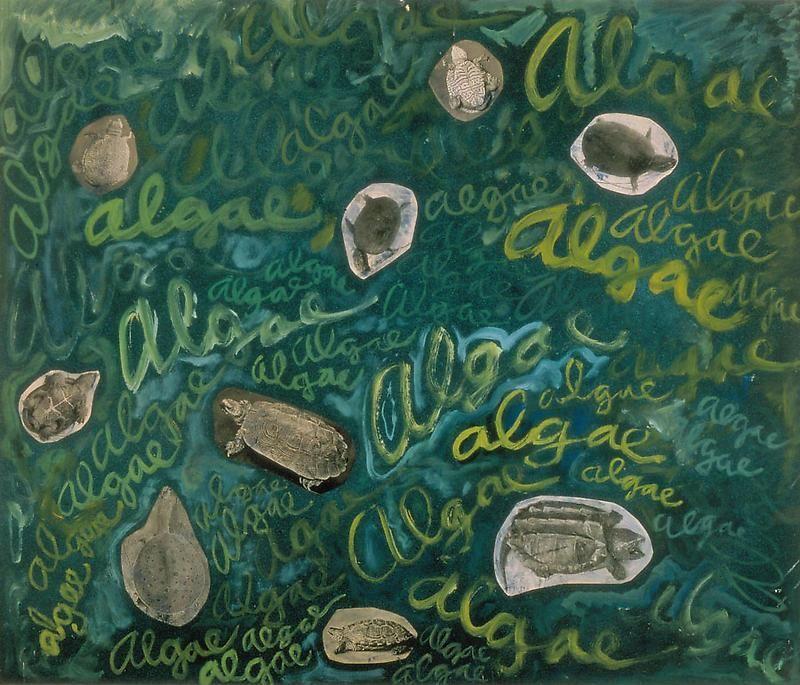 ROBERT SMITHSON Algae, Algae, ca. 1961-63