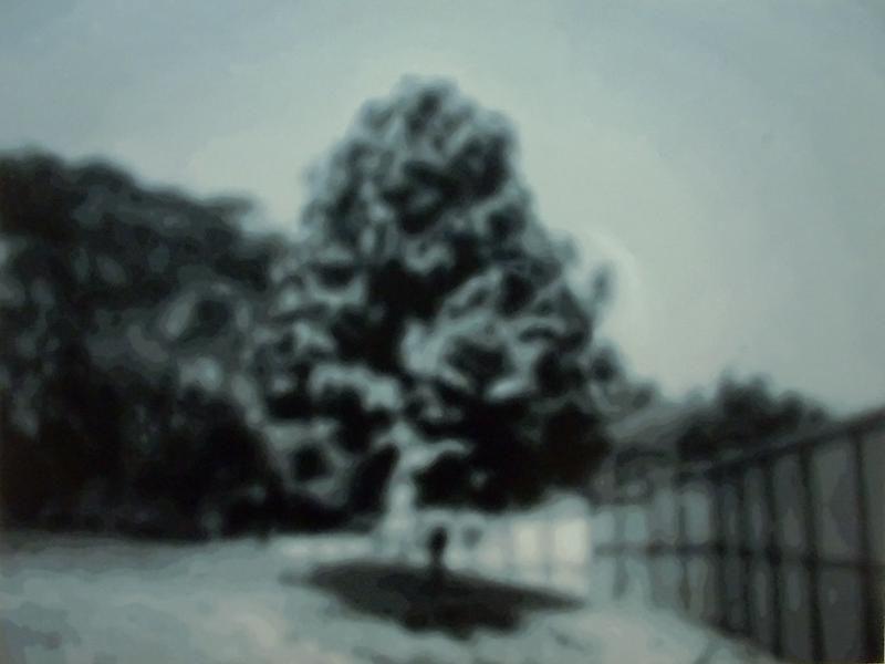 YAN LEI Tree, 2007