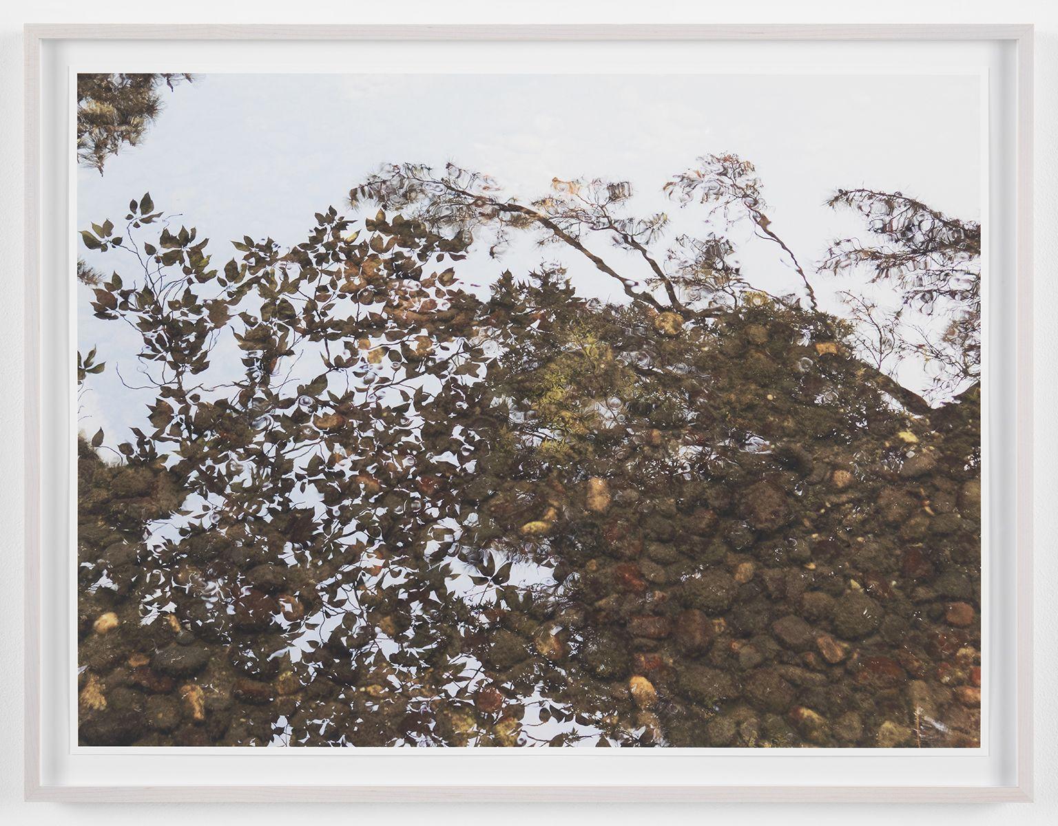 SPENCER FINCH Reflection Study (Kenrokuen), 2017