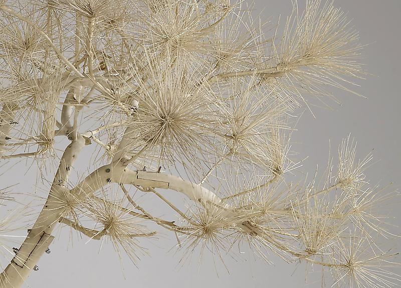 SHI JINSONG Short Pine Tree [detail], 2007