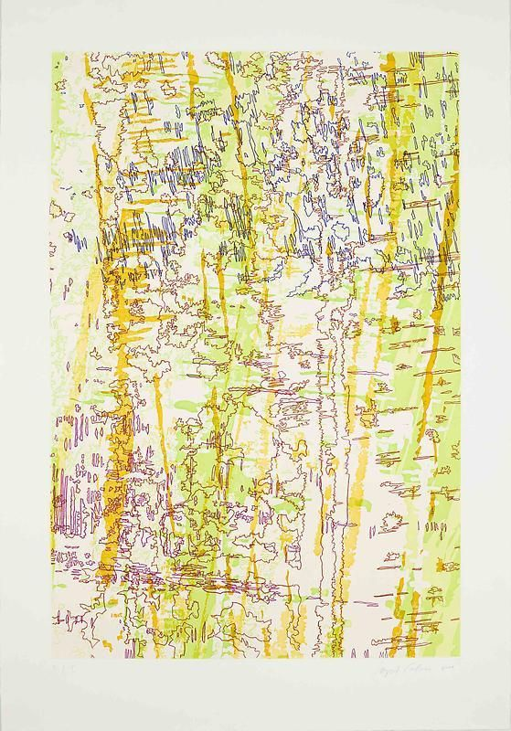 INGRID CALAME英格丽•卡兰 Tracings from the Indianapolis Motor Speedway II从印第安纳波利斯高速公路得到描图 2, 2009