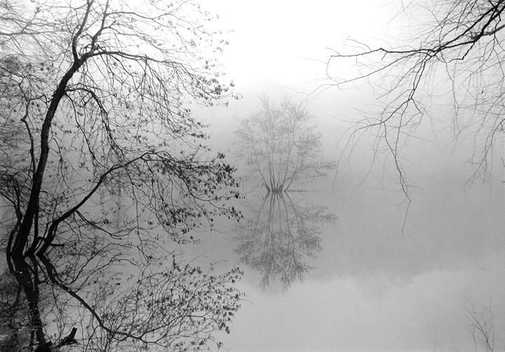 MARK STEINMETZ Sandy Creek, Athens, GA, 2001